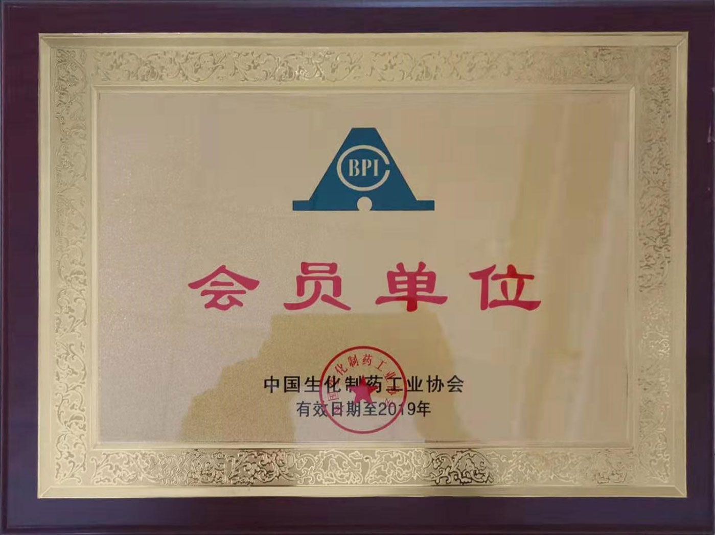 Member of China Biochemical Pharmaceutical Industry Association