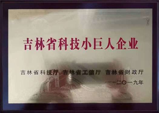 Jilin Province Science and Technology Little Giant Enterprise Accreditation Certificate